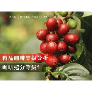 精品咖啡等級分析,怎麼挑到適合自己的咖啡