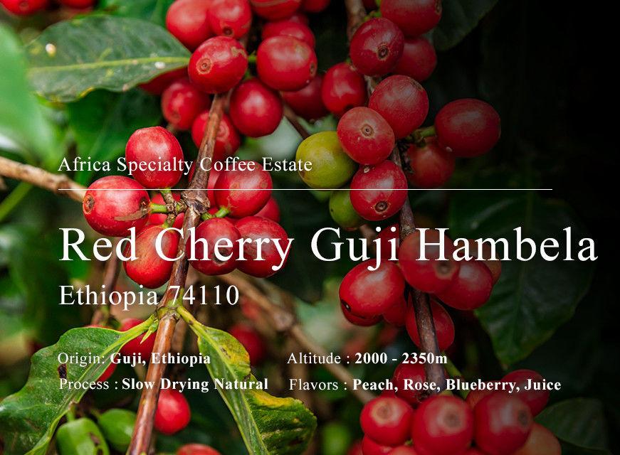 紅櫻桃 G1 罕貝拉