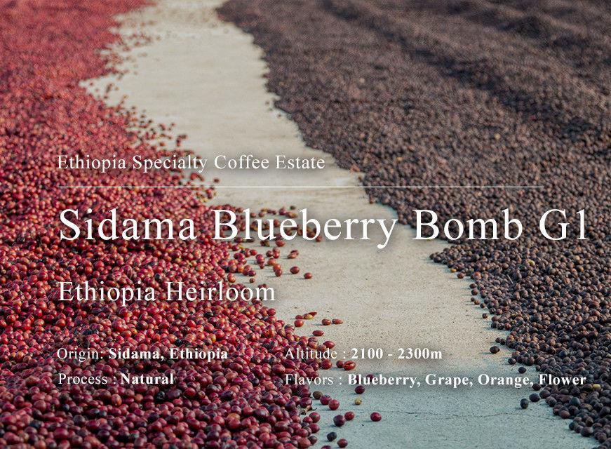 西達摩 小藍莓炸彈 G1